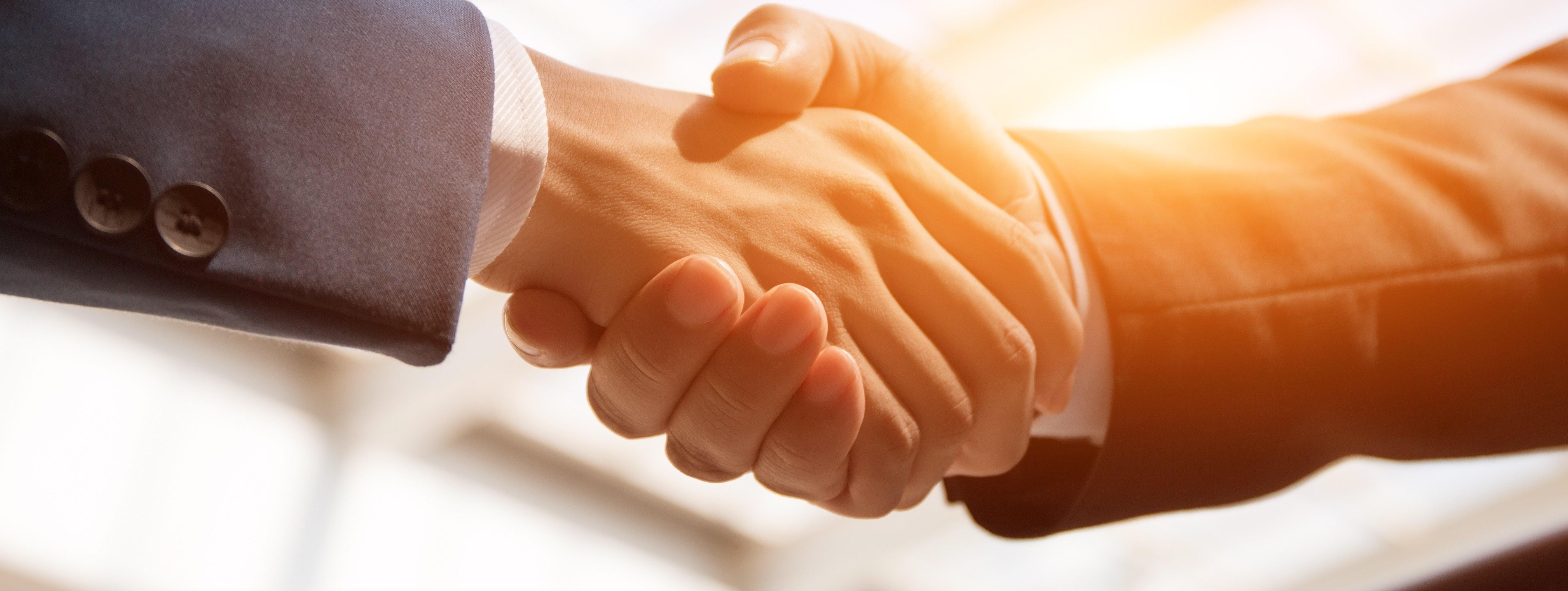 Business Coaching - für Ihren beruflichen Erfolg - Wildwechsel